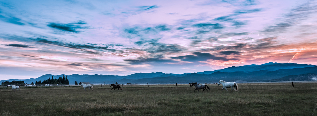 Ranch Memories Photography