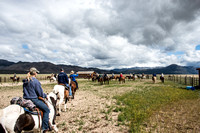 Hunewill Ranch Weeks 2014